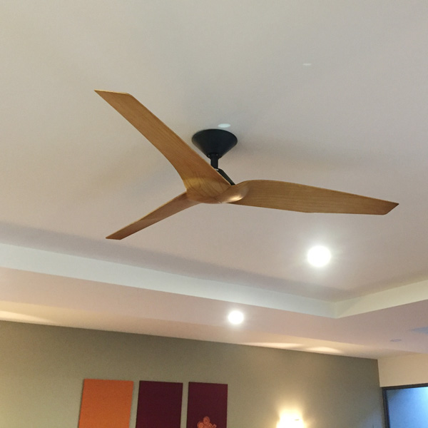 Infinity I Dc Ceiling Fan With Remote Black With Timber