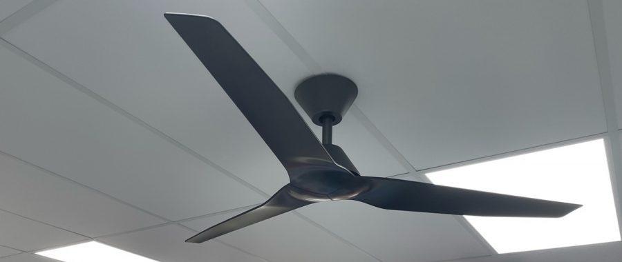 teds lighting ceiling fan in black